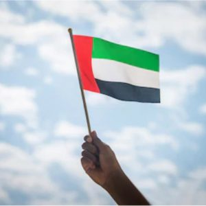 hand held flags manufactures UAE